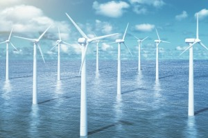Case Study: Due Diligence Consultancy Services German Offshore Wind Farm